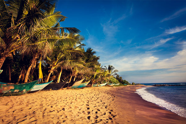 WTM 2017: Sri Lanka aims to double UK visitor numbers by 2020