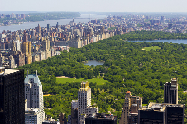 Tourist injured in New York Central Park explosion