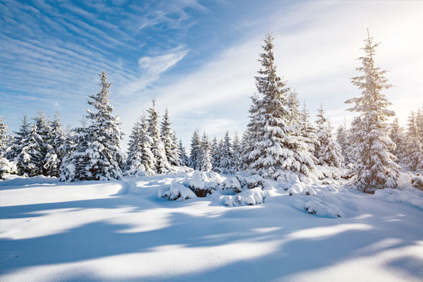 Tui offers exclusivity in Lapland as part of winter 2018 programme