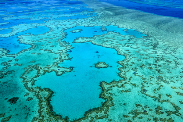 Australian government pledges A$500m to protect Great Barrier Reef