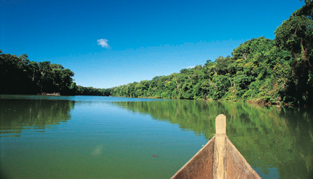 Latin America: Five ways to visit the Amazon