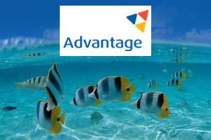 Three Advantage members shortlisted in consultancy competition