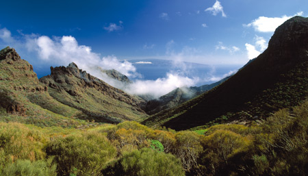 Tenerife update: What to do and where to stay in 2009