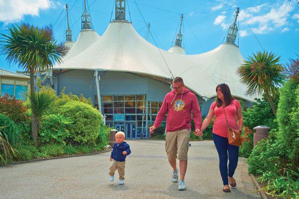 Butlin's boss calls for school holidays VAT cut