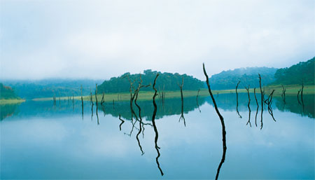 India's beautiful south: Holidays in Kerala