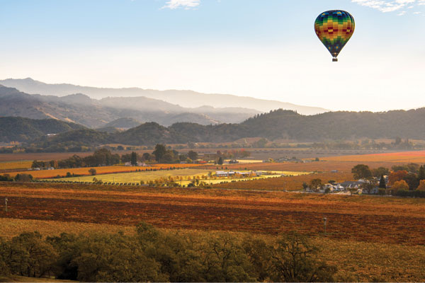 Napa & Sonoma: Uncork the wine regions