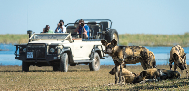 Africa Parks v Conservancies: Select your safari