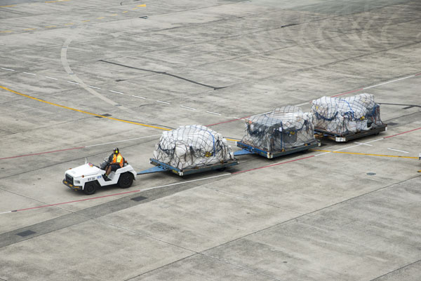 Investigation begun after baggage handlers caught throwing luggage