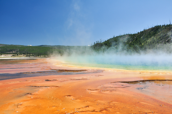 Man dies after falling into hot spring at Yellowstone National Park