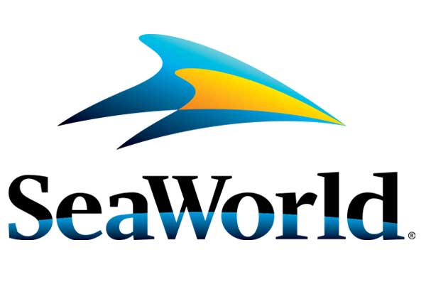 SeaWorld confirms end of orca breeding programme